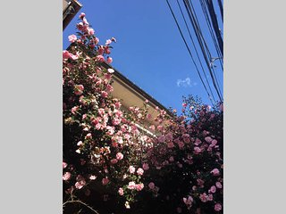 Shinjuku from 4min Roppongi 10min freewifi convinient Japanese style house1 - Shinjuku vacation rentals