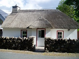 Lovely Cottage with Deck and Internet Access - Dungarvan vacation rentals