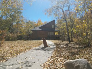 Mt. Antero Chalet at Creekside Chalets - Salida vacation rentals