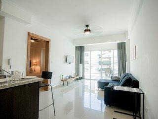 Santo Domingo Terrace Apartment - Santo Domingo vacation rentals