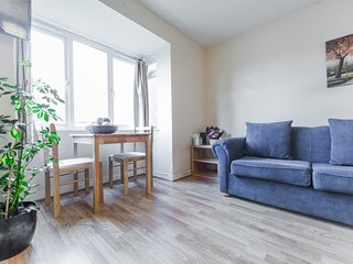 Cozy Studio Apartment in Hanger Lane, 1 min walk from station! - Wembley vacation rentals