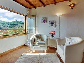 Nice Villa with Internet Access and A/C - Tacoronte vacation rentals