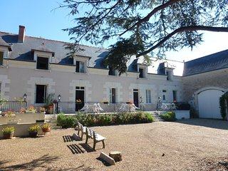 Cosy flat in the Loire Valley, with 2 bedrooms, WiFi & shared pool – 1.5km from Château de Chenonceau! - Chisseaux vacation rentals