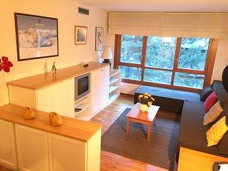 Cozy apartment very close to ski station in Baqueira - Baqueira Beret vacation rentals