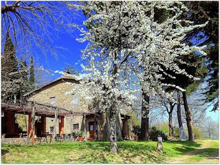 Beautiful House with Internet Access and Central Heating - Greve in Chianti vacation rentals