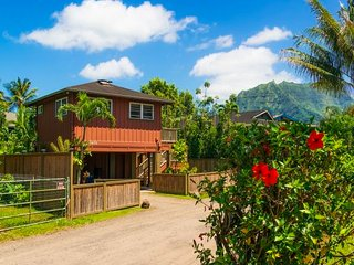 Hanalei cul-de-sac - walk to beach and town - Hanalei vacation rentals