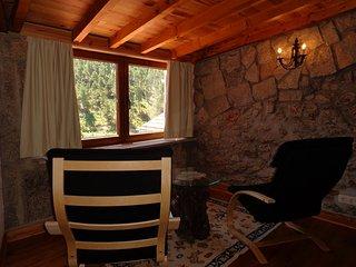 Serra da Estrela, Sabugueiro (15 min da Torre); Capacidade 11 pessoas - Sabugueiro vacation rentals