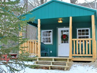 Cozy Cabin - Year Round Cabin in White Mts - Shelburne vacation rentals