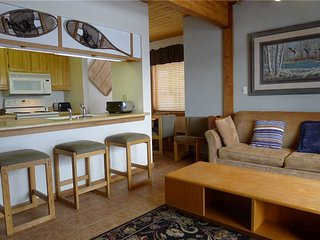 Wood Creek #301 - Crested Butte vacation rentals