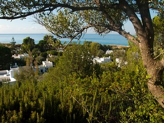 Villa Il Carrubo, 4BR, 4BA, gorgeous sea view WiFi - Geremeas vacation rentals