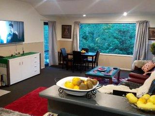 Queenstown ,quite close to town , 3 bedroom - Queenstown vacation rentals