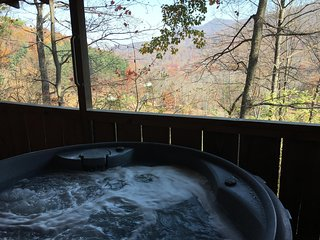 Nice and Knotty*VRBO Best*Hot Tub*Fireplace*View*Near Downtown*Free WiFi - Asheville vacation rentals