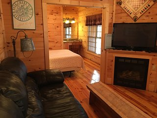 Nice Cabin with Deck and Internet Access - Asheville vacation rentals