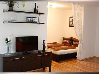 Appartement in der Nähe des Festspielhauses - Baden-Baden vacation rentals