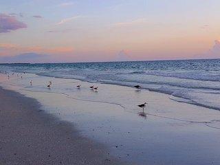 Coral Shores 3 Bedroom 2 bath Beach Getaway with addt'l full bath, Wifi, Parking - Saint Pete Beach vacation rentals