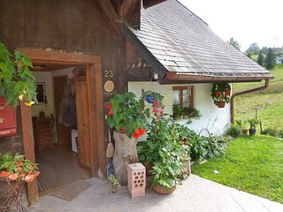 Beautiful Lenzkirch Apartment rental with Television - Lenzkirch vacation rentals