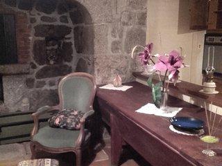 Maison meublée à côté de la Tour des Anglais - Saugues vacation rentals