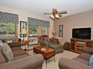 Four Big Bears: the only four bedroom condo in Deerfield, Canaan Valley, WV! - Davis vacation rentals