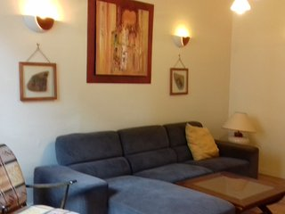 holiday home in Saumur town center - Saumur vacation rentals