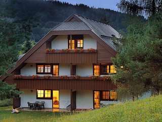 Sonnenresort Maltschacher See #11284.7 - Agsdorf vacation rentals