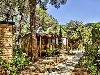 Nice 2 bedroom House in Castiglione Della Pescaia with Internet Access - Castiglione Della Pescaia vacation rentals