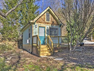 NEW! 1BR Arden Cabin-Heart of the Blue Ridge Mtns! - Arden vacation rentals