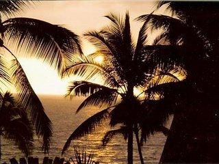 Snorkel, Swim and Enjoy Paradise - Pahoa vacation rentals