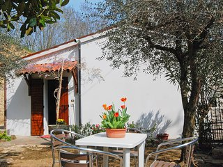 Bright House with Internet Access and A/C - Albettone vacation rentals