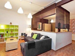 Sants-Montjuic: Teodoro Bonaplata #3890.1 - Barcelona vacation rentals