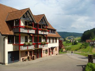 2 bedroom Condo with Internet Access in Tonbach - Tonbach vacation rentals