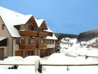 Nice Condo with Internet Access and Television - Tonbach vacation rentals
