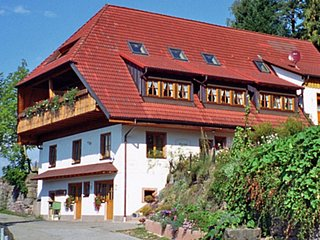 Beautiful Condo with Television and Balcony in Schiltach - Schiltach vacation rentals