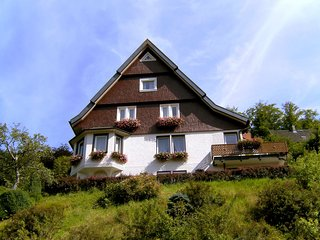 Bright 1 bedroom Triberg Apartment with Internet Access - Triberg vacation rentals