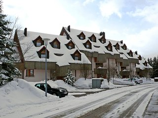Cozy Schonach Apartment rental with Television - Schonach vacation rentals