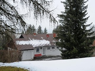 Beautiful 1 bedroom Dittishausen Condo with Internet Access - Dittishausen vacation rentals