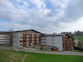 Convenient Apartment with Shared Outdoor Pool and Television in Schluchsee - Schluchsee vacation rentals
