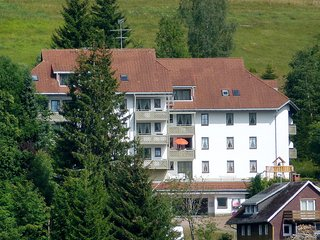 Beautiful Condo with Internet Access and Shared Outdoor Pool - Todtnau vacation rentals