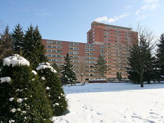 Cozy 1 bedroom Apartment in Altenau with Television - Altenau vacation rentals