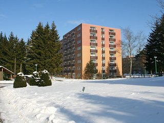 Cozy Altenau Apartment rental with Television - Altenau vacation rentals