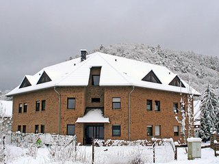 Ferienapartments Adenau #5410.2 - Adenau vacation rentals