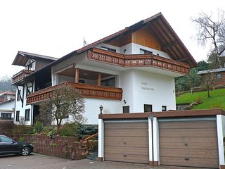 1 bedroom Condo with Internet Access in Beerfelden - Beerfelden vacation rentals