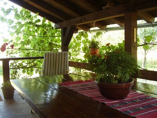 Cozy Zaluznica House rental with Television - Zaluznica vacation rentals
