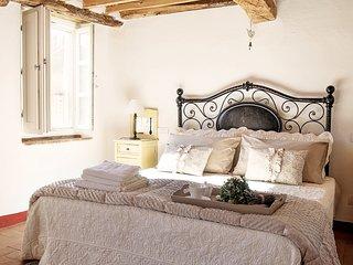 Rustico Dora sull'antico cammino della Francigena - Montemagno vacation rentals
