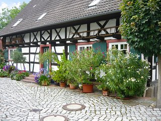 Comfortable House with Television and Microwave - Meissenheim vacation rentals