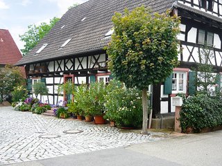 Comfortable 4 bedroom Vacation Rental in Meissenheim - Meissenheim vacation rentals