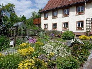 Romantic 1 bedroom Apartment in Hufingen with Internet Access - Hufingen vacation rentals
