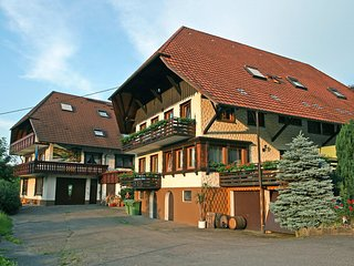 Nice Condo with Shared Outdoor Pool and Television - Steinach vacation rentals