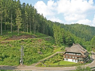 Cozy 2 bedroom Condo in Furtwangen with Internet Access - Furtwangen vacation rentals