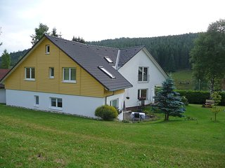 Nice Condo with Internet Access and Television - Bubenbach vacation rentals