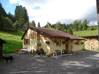 Cozy Lenzkirch House rental with Television - Lenzkirch vacation rentals